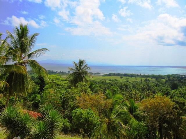 Гаити 2