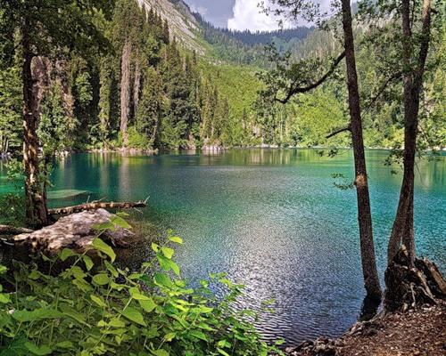 Озеро Рица фото