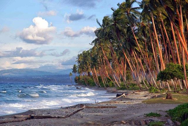Соломоновы острова 3